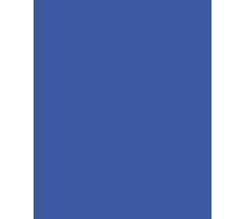 Health-icon-4